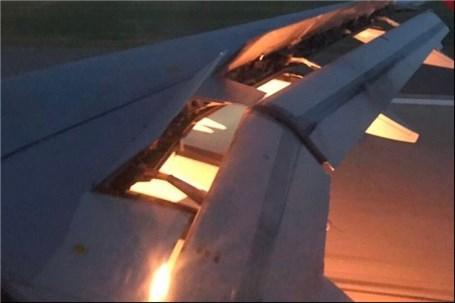 دلیل آتش گرفتن بال هواپیمای تیم عربستان یک کبوتر بوده است!