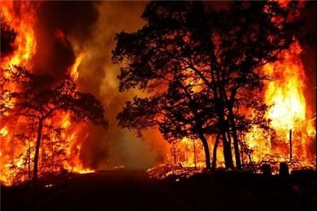وقوع حریق در جنگلهای ارسباران